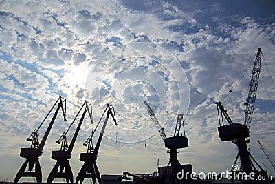 Cranes in a port