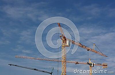 Cranes up the sky