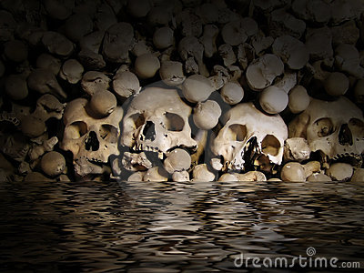 Crani ed ossa