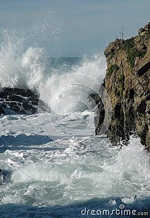 Free Crashing Waves & Rocks Royalty Free Stock Photo - 14489045