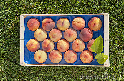 Crate of peaches Editorial Stock Photo