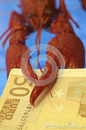 Free Crawfish And Euro Stock Photos - 377393
