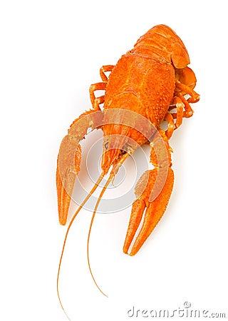 Crawfish boiled one