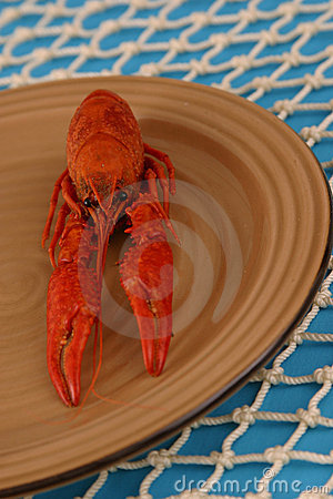 Free Crawfish On Plate Vertical Royalty Free Stock Photos - 658378