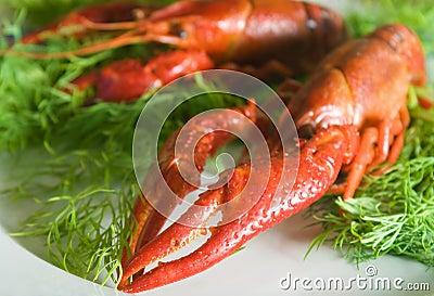 Crayfish,claw