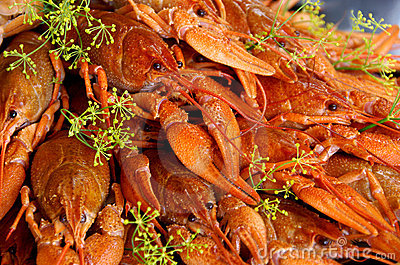Crayfish cooked with dill