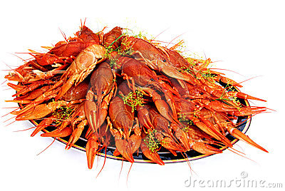 Crayfish cooked in dill arranged on a tray