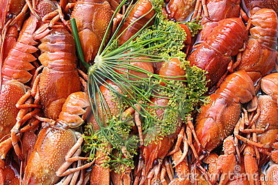 Crayfish and dill