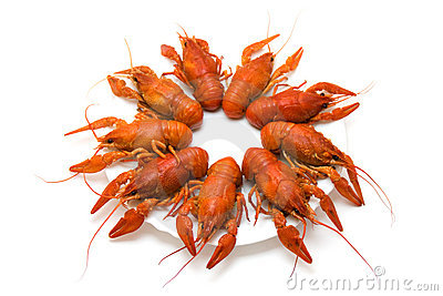 Crayfish on white plate