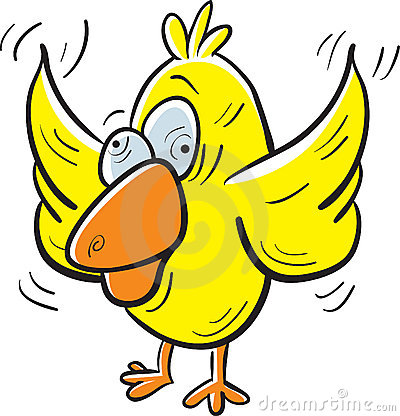 Free Crazy Bird Royalty Free Stock Photos - 2665898