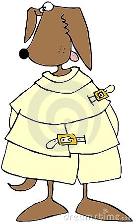 Crazy Dog In A Straitjacket Stock Photo - Image: 13985500