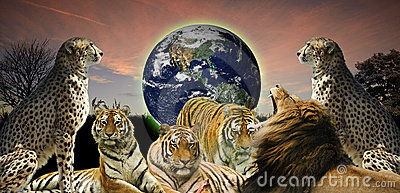 Creative concept of wildlife protecting planet