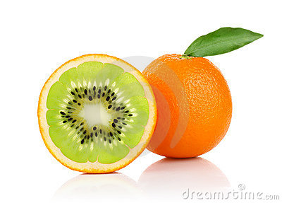 Creative conception of orange and