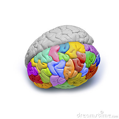 Free Creative Emotions Brain Stock Photo - 7383670