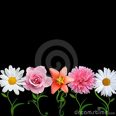 Free Creative Flowers Vector Royalty Free Stock Photo - 13917245