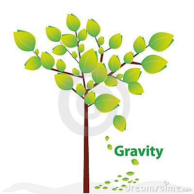 Creative gravity