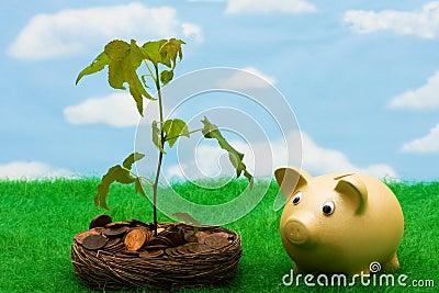 Crecimiento en sus ahorros