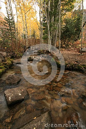 Creek in fall with aspens #8