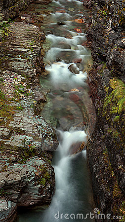 A creek in Glacier National Park