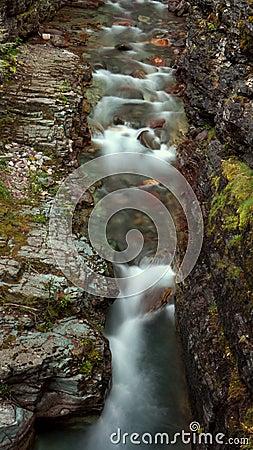 A creek in Glacier National Park