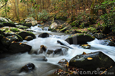Creek running thru Smoky Mountain National Park