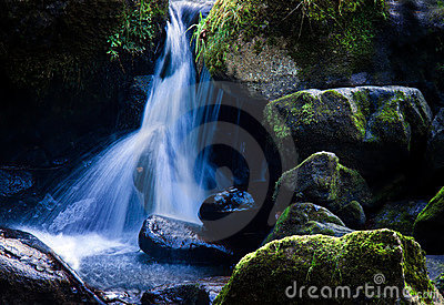 Creek with running water and stone