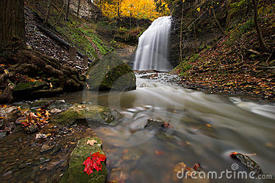 Creek with waterfall