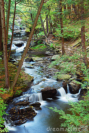 Free Creek With Hiking Trails Stock Photography - 10993292