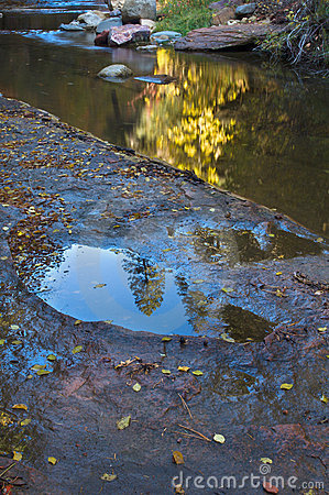 Free Creekside Reflection Stock Photography - 719732
