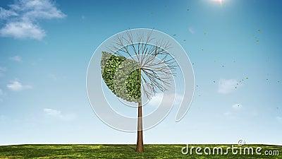 Cresça a carta de torta da forma da árvore indicado 30 por cento Ícone verde video estoque
