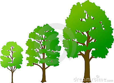 Crescimento da árvore/eps