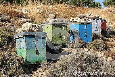 Crete / Beekeeping