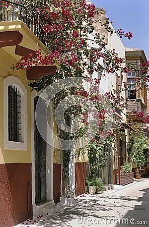 Crete flowered street