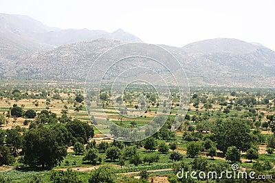 Crete / Lassithi highlands
