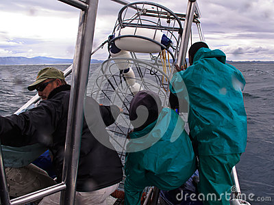 Crew lowers metal shark cage for divers into Ganis Bay Editorial Image