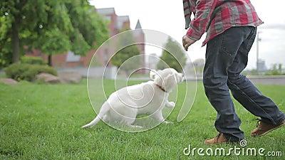 Criança que afaga e que abraça seu amigo do animal de animal de estimação Rapaz pequeno que joga com seu cão no parque filme