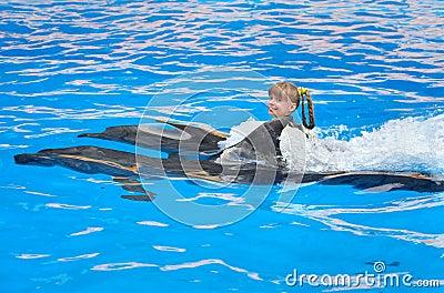 Criança e golfinhos que nadam na água azul.