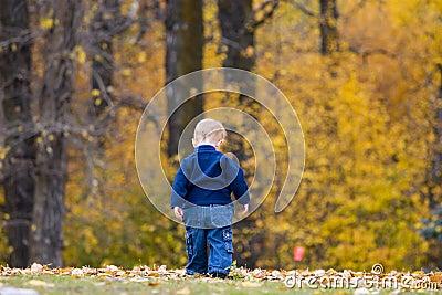 Criança nas folhas de outono