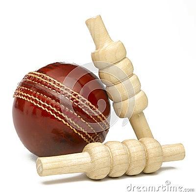 Free Cricket Ball Royalty Free Stock Photos - 45128068