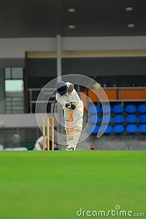 A cricket batsman