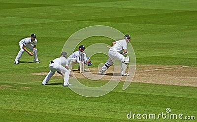 Cricket à l ovale Photo stock éditorial