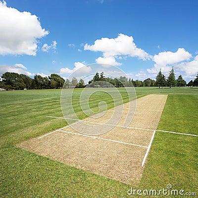Cricket pitch empty