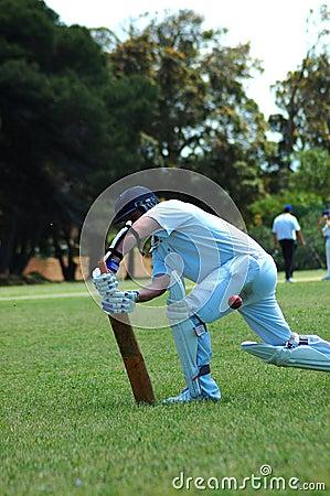 Free Cricket Player Stock Photo - 1402270