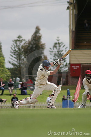 Free Cricket Player Royalty Free Stock Image - 347886