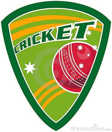 Cricket sport ball shield