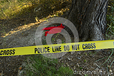 Crime scene: Police line do not cross tape