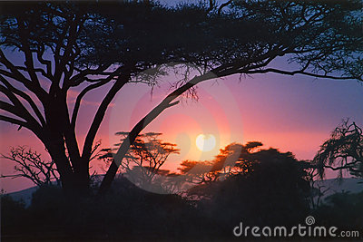 Crimson African sunrise