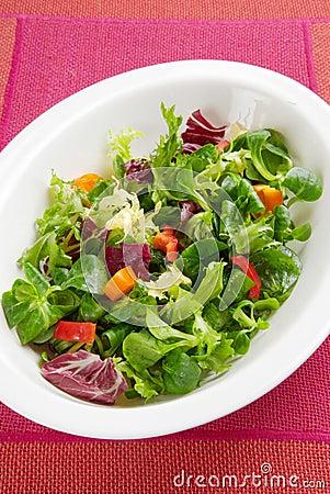 Crispy leafy salad in bowl