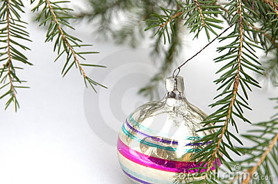 A Cristmas tree branch with a glass ball