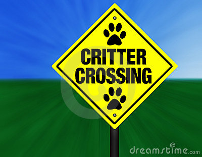 Critter Crossing Street Sign